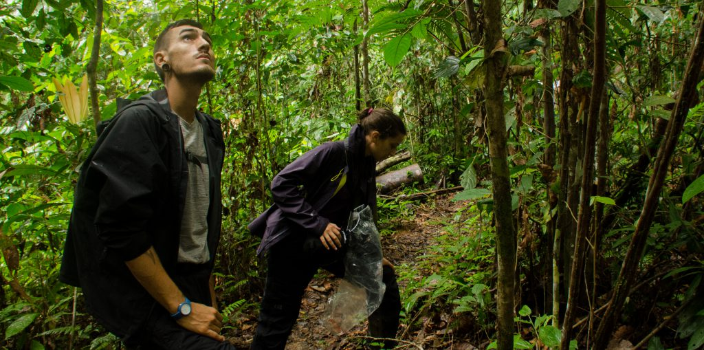 NatExplorers - Barbara Réthoré et Julien Chapuis - recherche en forêt