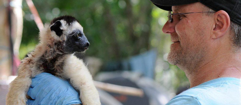 Makay 2017 - primatologie - EWendenbaum