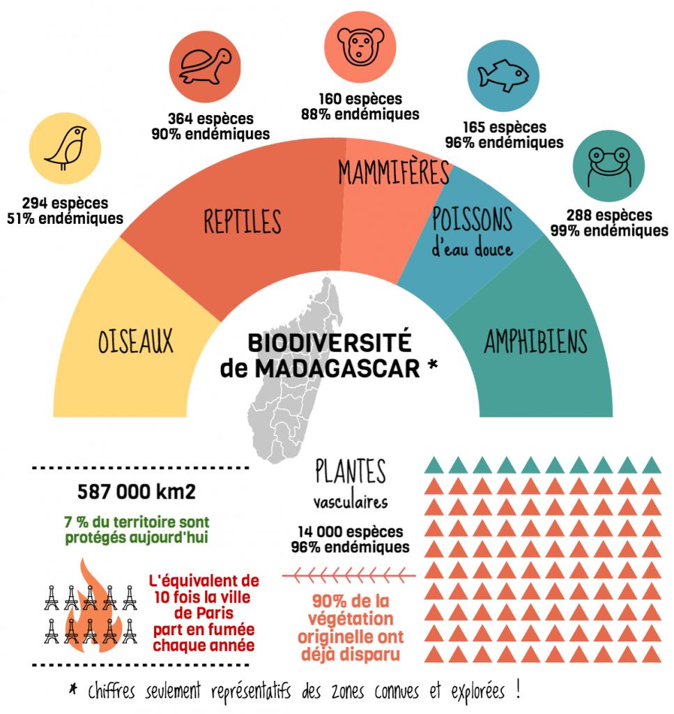 Madagascar - hotspot de biodiversité