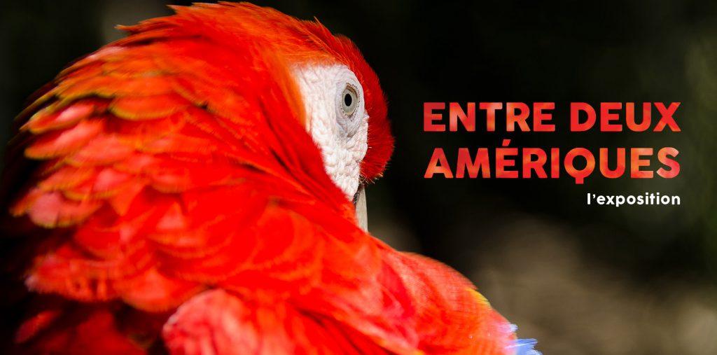 NatExplorers / Entre Deux Amériques - expo