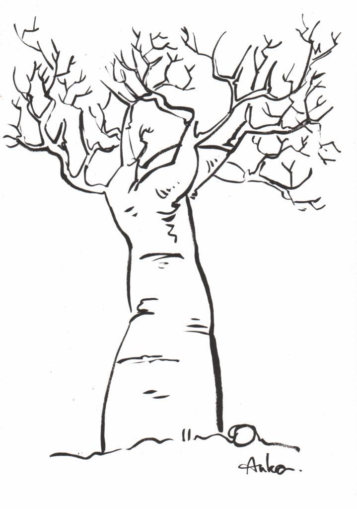 Avis de recherche - Baobab