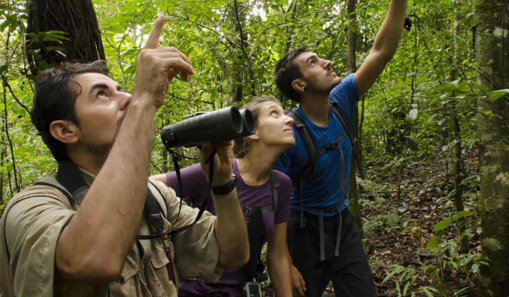 Biodiversité-Natexplorers-Panama