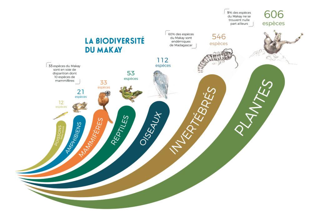 Biodiversité - expédition - Makay